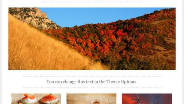 40+新鲜和免费的WordPress主题