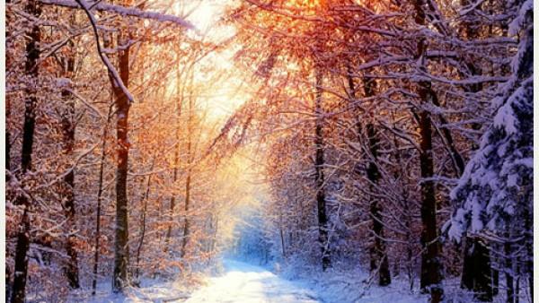 20张美丽的冬季桌面壁纸
