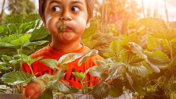 8位超攒的创意儿童摄影师作品