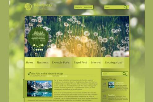 wordpressthemes38
