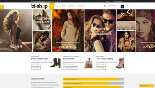 12-wordpress-ecommerce-themes