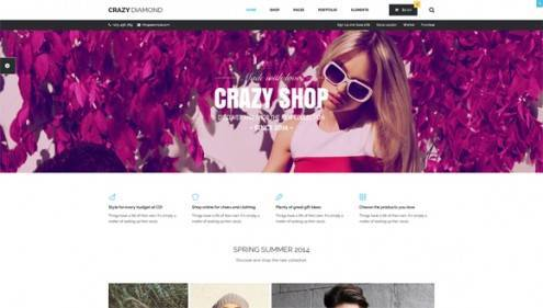 13-wordpress-ecommerce-themes