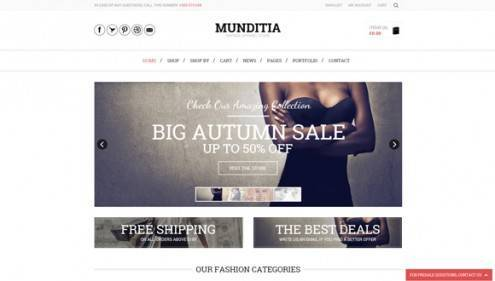 18-wordpress-ecommerce-themes