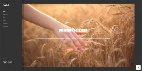 19-video-background-wordpress-themes
