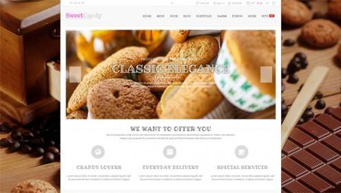 19-wordpress-ecommerce-themes