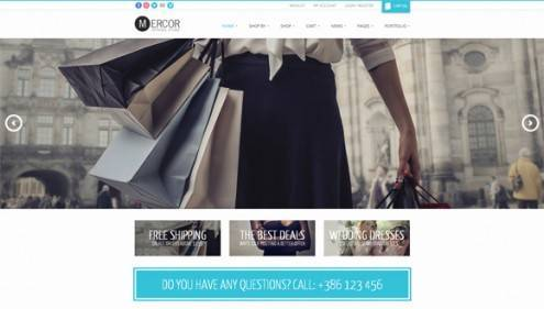 2-wordpress-ecommerce-themes