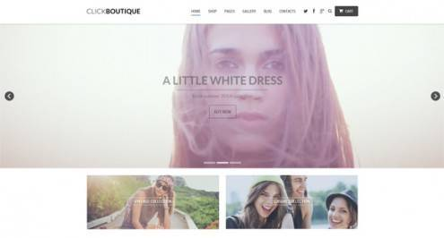 20-video-background-wordpress-themes