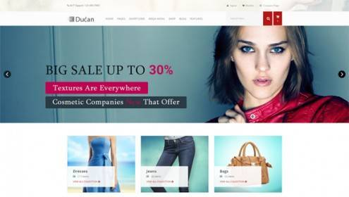 7-wordpress-ecommerce-themes
