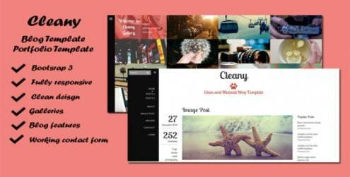 Cleany-Blog-Portfolio-Template-