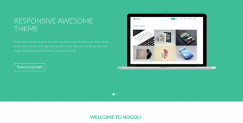 nogoli-awesome-responsive-theme