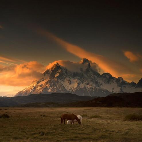 Patagonia-Dreaming-I-700w-opt